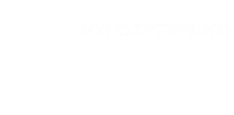 transport-fedorowicz-logo